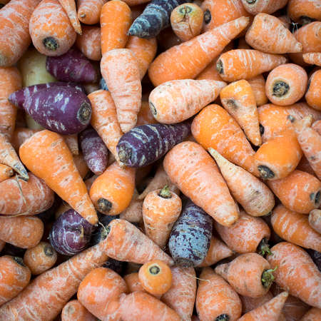 Purple and orange mini carrots for sale at a farmers market. Square frame format
