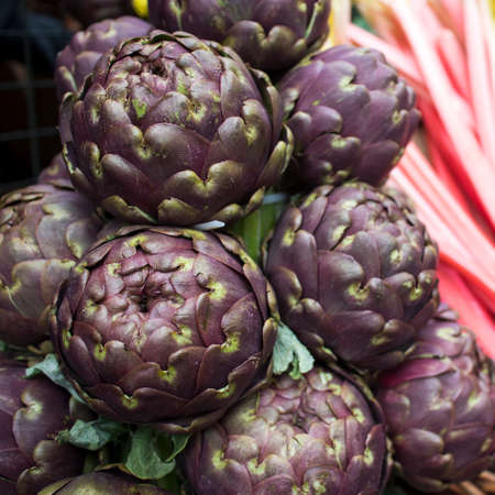 Blue fresh artichokes for sale at a farmers market. Squere frame Reklamní fotografie