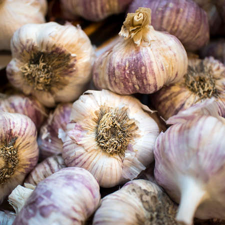Garlic (Allium sativum; English: garlic) is the name of the plant of the genus Allium as well as the name of the tuber produced. Has a history of use by humans for more than 7,000 years, mainly growin Reklamní fotografie