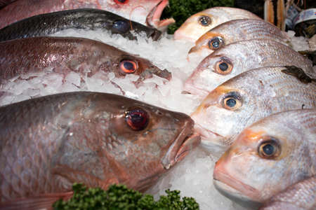 Various types of seafood for sale in the local market. Day boat John Dory Fish Reklamní fotografie