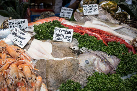 Various types of seafood for sale in the local market. The day boat cornish turbot is a fast growing and powerful flatfish. langoustine shetiano