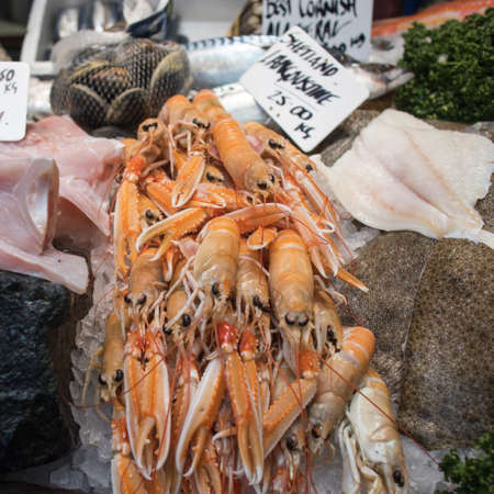 Various types of seafood for sale in the local market. langoustine,