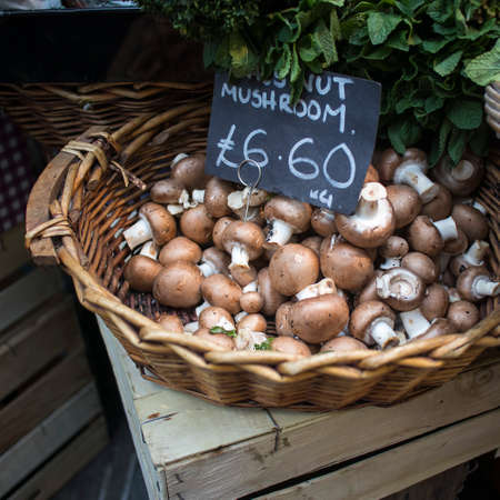 Sale of various types of mushrooms in birch bark boxes at the farmers market. Including chanterelles. Portobello mushrooms Reklamní fotografie