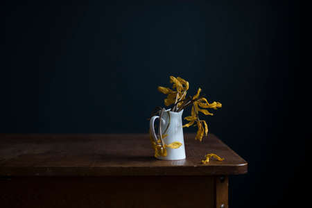 Withered yellow tulips in a white jug on a wooden table opposite a dark blue wall. Copy space