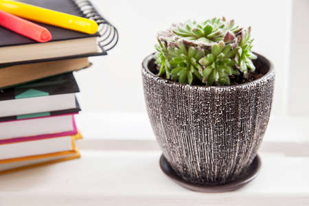 Alarm clock and felt-tip pens on a stack of books and a ceramic pot with succulent. Concept - back to school. Space for text