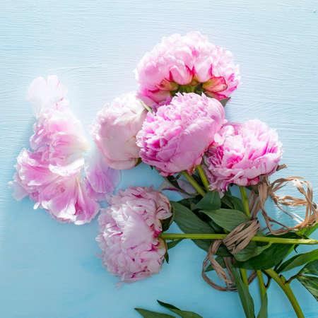 粉色牡丹花束特写,淡蓝木制背景上的母亲节春花。婚礼和其他节日。平躺