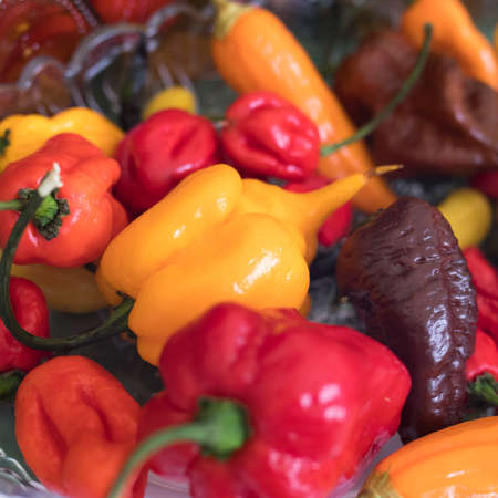 Various types of hot yellow, red, brown peppers in a bowl for table decoration