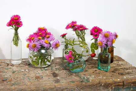 Autumn asters in small pharmacy bottles instead of vases on a long wooden bench against a white wall. Copy space