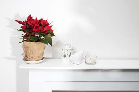 A poinsettia in a pot wrapped in craft beige paper tied with string stands on a white fireplace decorating the room. Candle, white candlestick in the shape of a lantern and earthenware figurine of a bullfinch on a fireplace