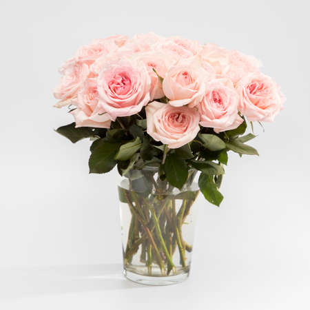 Rose White Pink O'hara. Rose White Pink O'hara. Bouquet of pink roses are in a glass vase. Copy space