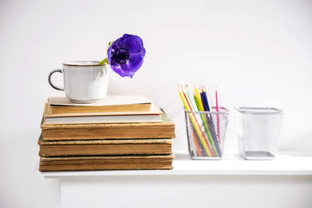 One blue anemone in a cup in the style of the seventies on the table with books as an interior decoration. Pencil holders with pencils Фото со стока