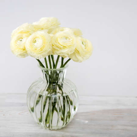 Bouquet of yellow ranunculus in a round glass vase on a pale gray background. Copy space