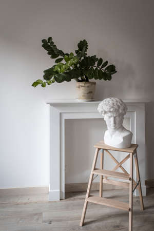 The plaster head of David on a high stool against the background of a fake fireplace panel and Zamioculcas plant in the clay pot decorate the interior. Scandinavian style