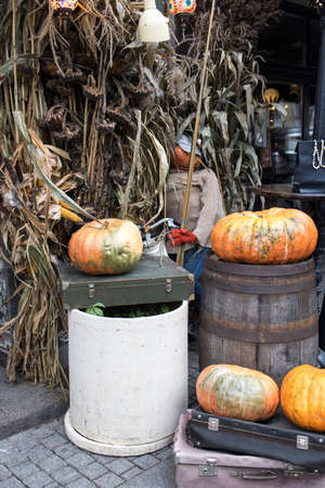Halloween decorations: old suitcase, burlap, bush, pumpkins, straw, lanterns are located at the entrance to the house
