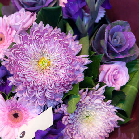 Bouquet of asters, gerbera, roses and ornamental brassica cabbage in blue tones for solemn ceremonies. Square frame