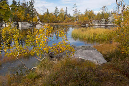 Swamp or lake with megalithic seid boulder stones, dead trees in the nature reserve on mountain Vottovaara, Karelia, Russia.
