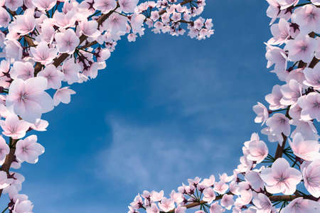 3D Illustration of Cherry Blossom Tree Stock Photo