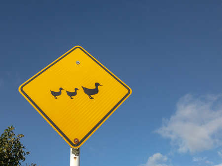 Ducks crossing yellow sign against a blue sky horizontal
