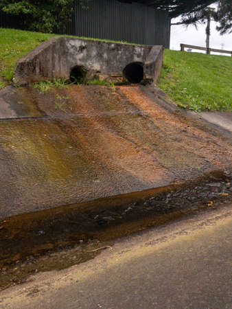 Fungus stained stormwater drain