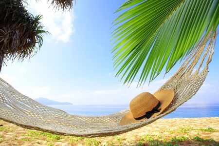 furlough: view of nice  hammock hanging between two palms with some hat in it