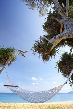furlough: view of nice white  hammock hanging between two palms