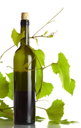 corked: view of corked wine bottle with vine around it on white back