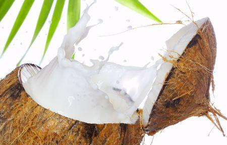 splutter: view of coconut milk splash isolated on white