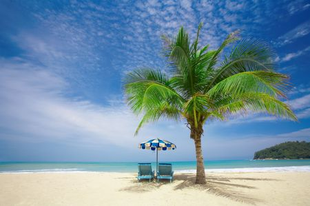laze: view of nice coconut palm and two chairs with umbrella beneath