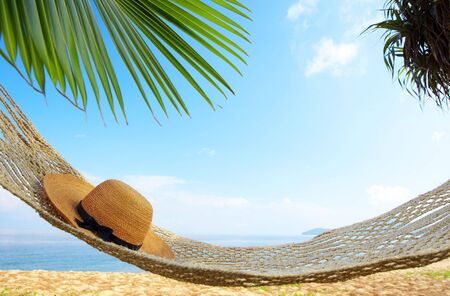 view of nice hammock hanging between two palms with some hat in it