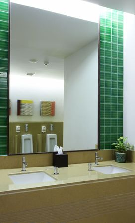 contorted: View of nice modern toilet room. Images on wall were contorted.