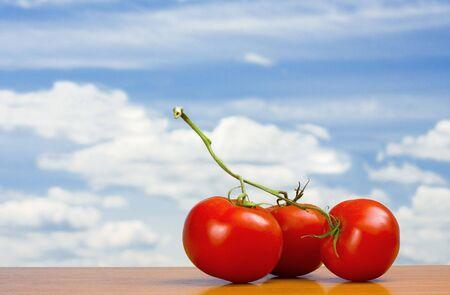 market gardening: View of three nice big red tomatoes  Stock Photo