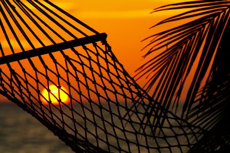 silhouette of hammock during tropical sunset photo