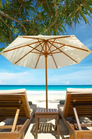 twiddle: view of two nice chairs and umbrella on mangrove beach