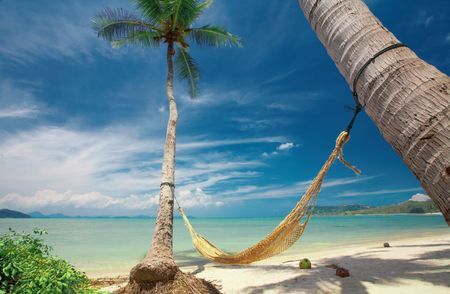 laze: view of nice yellow straw hammock hanging between two palms