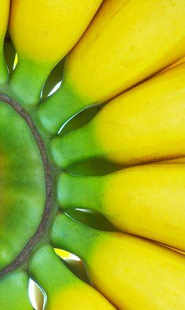 nutriments: vista del racimo de Niza deliciosos pl�tanos frescos macro