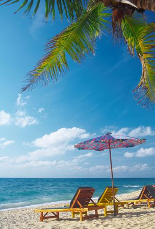solter�a: Ver compra del bamb� de dos salones y paraguas en la playa