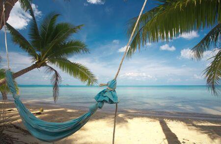 solter�a: bonita vista de la hamaca de lona azul que cuelgan entre dos palmeras