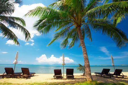 solter�a: opini�n de algunas sillas y sombrillas blancas en la playa temprano en la ma�ana  Foto de archivo