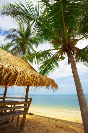 hovel: view of nice exotic bamboo hut on tropical beach