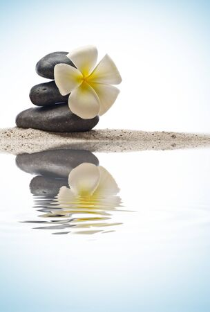 close up view of  gray stones  and flower  on color back Stock Photo - 7197345