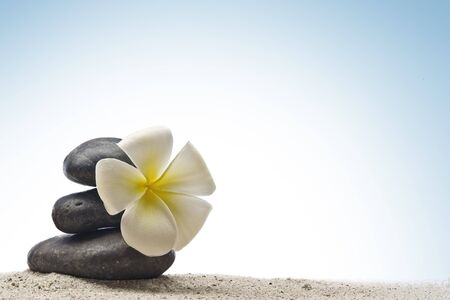 close up view of  gray stones  and flower  on color back Stock Photo - 7421176