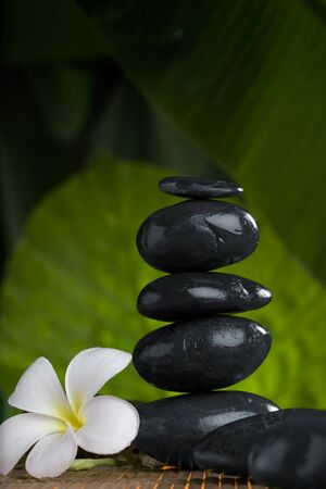 close up view of  gray stones  and flower  on color back Stock Photo - 8377467