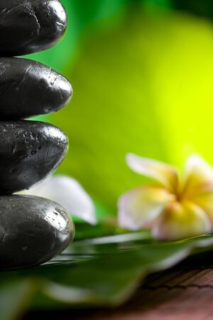 close up view of  gray stones  and flower  on color back Stock Photo - 8377846