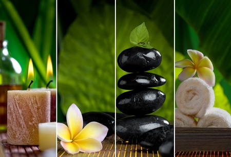 plumeria: Close up view of spa theme objects on natural background