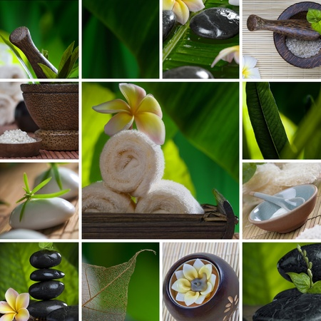 Close up view of spa theme objects on natural background Stock Photo - 9155816