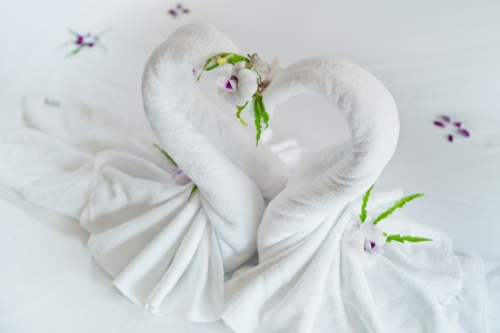 close up view of two nice towels swans on white bed sheet Stock Photo - 9797728