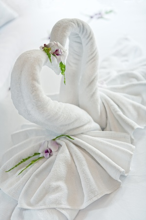 close up view of two nice towels swans on white bed sheet photo