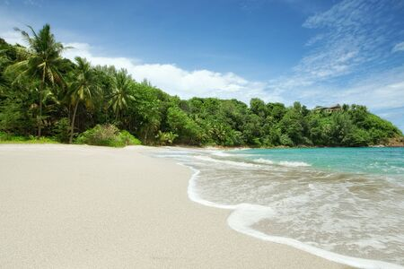 plage: panoramic view of nice  paradise like empty tropical beach