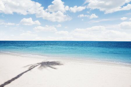 plage: View of nice tropical  beach  with some palms shadow  Stock Photo