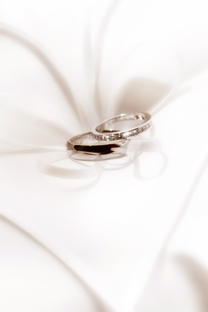 back up: close up view of two wedding rings on white back